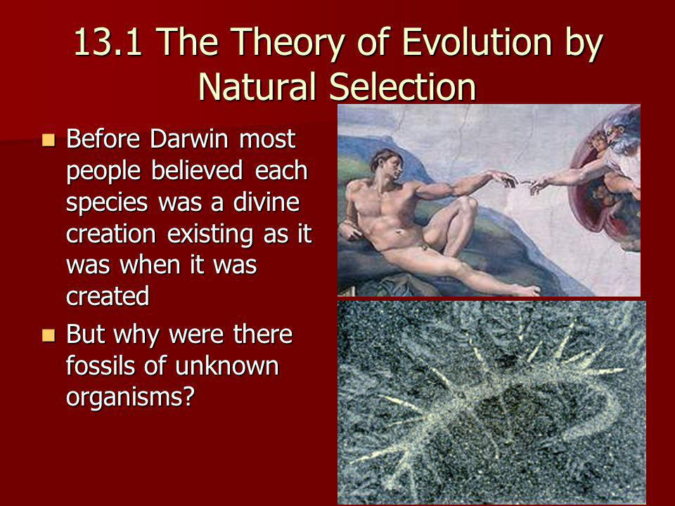 13.1 The Theory of Evolution by Natural Selection