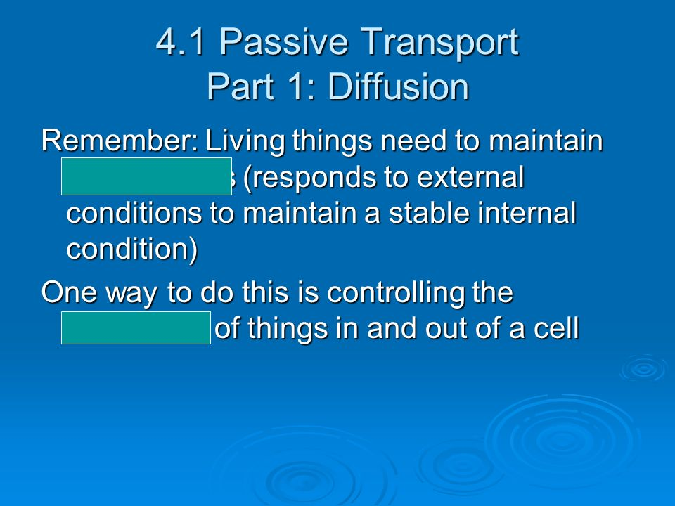 4.1 Passive Transport Part 1: Diffusion
