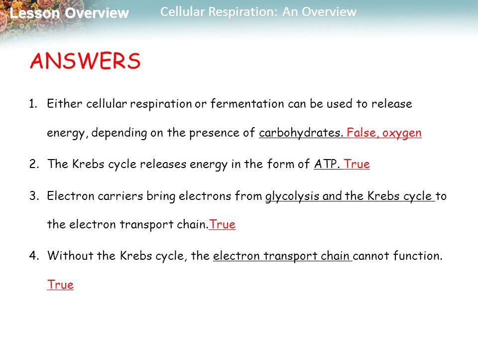 Objectives 9.1 Cellular Respiration - ppt video online download
