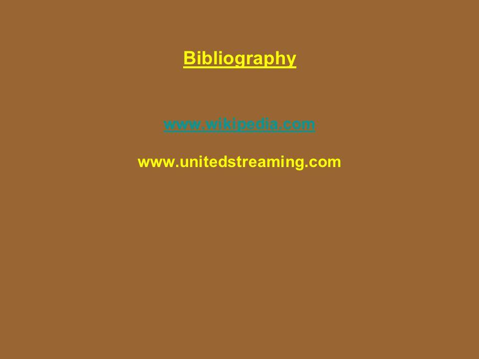 Bibliography www.wikipedia.com www.unitedstreaming.com