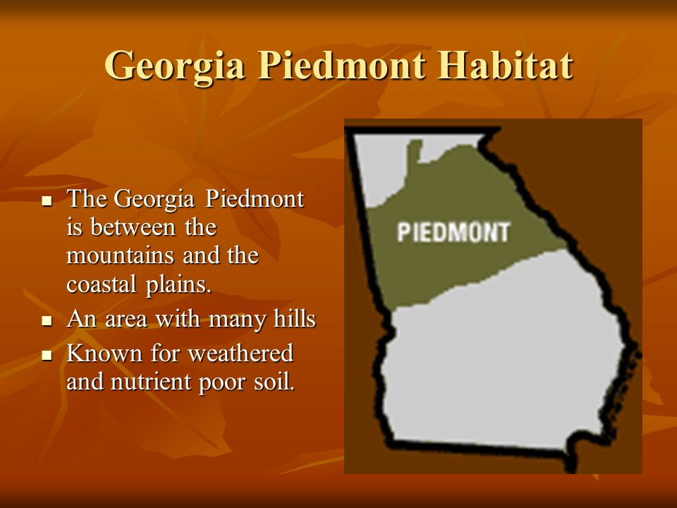 Georgia Habitats. - ppt download