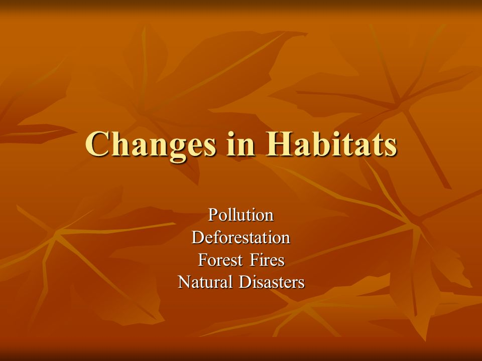 Pollution Deforestation Forest Fires Natural Disasters