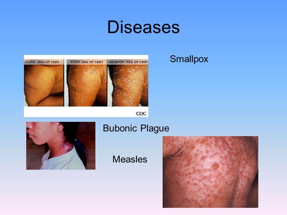 Diseases Smallpox Bubonic Plague Measles
