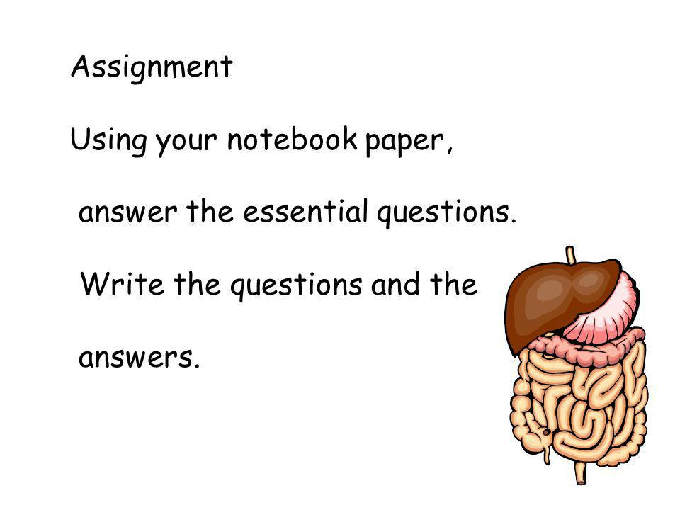 Assignment Using your notebook paper, answer the essential questions