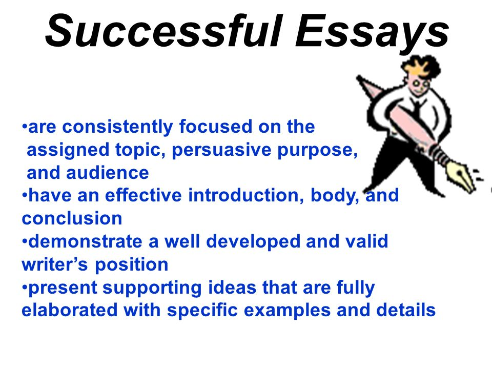 Successful Essays are consistently focused on the