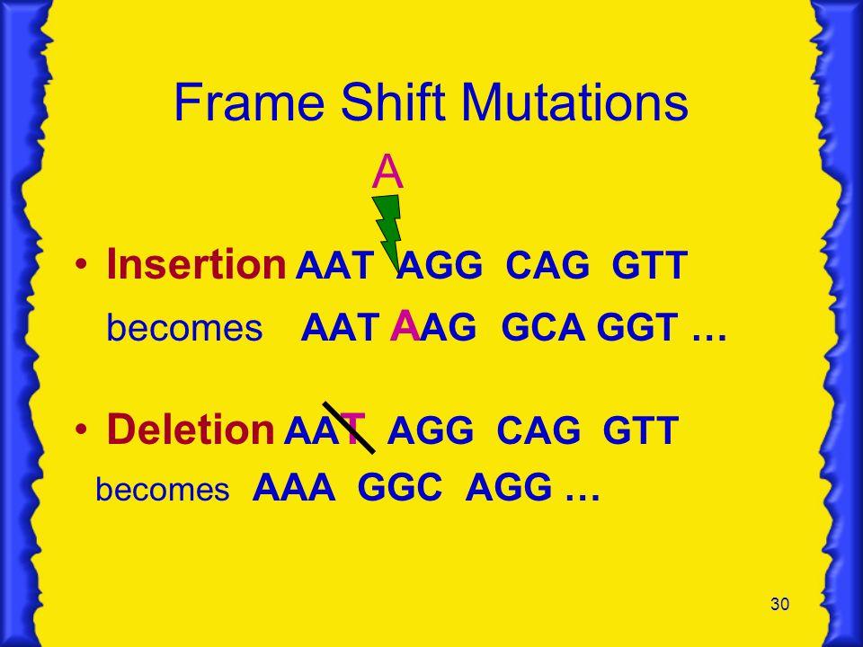 Frame Shift Mutations A Insertion AAT AGG CAG GTT