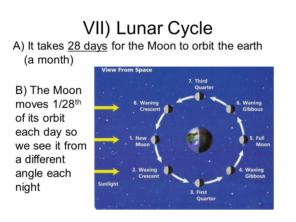 VII) Lunar Cycle A) It takes 28 days for the Moon to orbit the earth (a month)