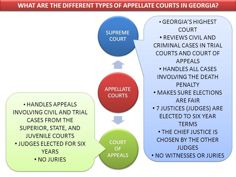 WHAT ARE THE DIFFERENT TYPES OF APPELLATE COURTS IN GEORGIA