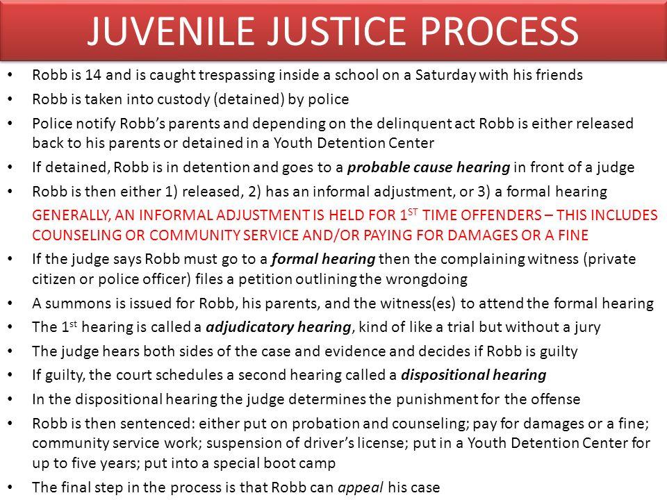 JUVENILE JUSTICE PROCESS