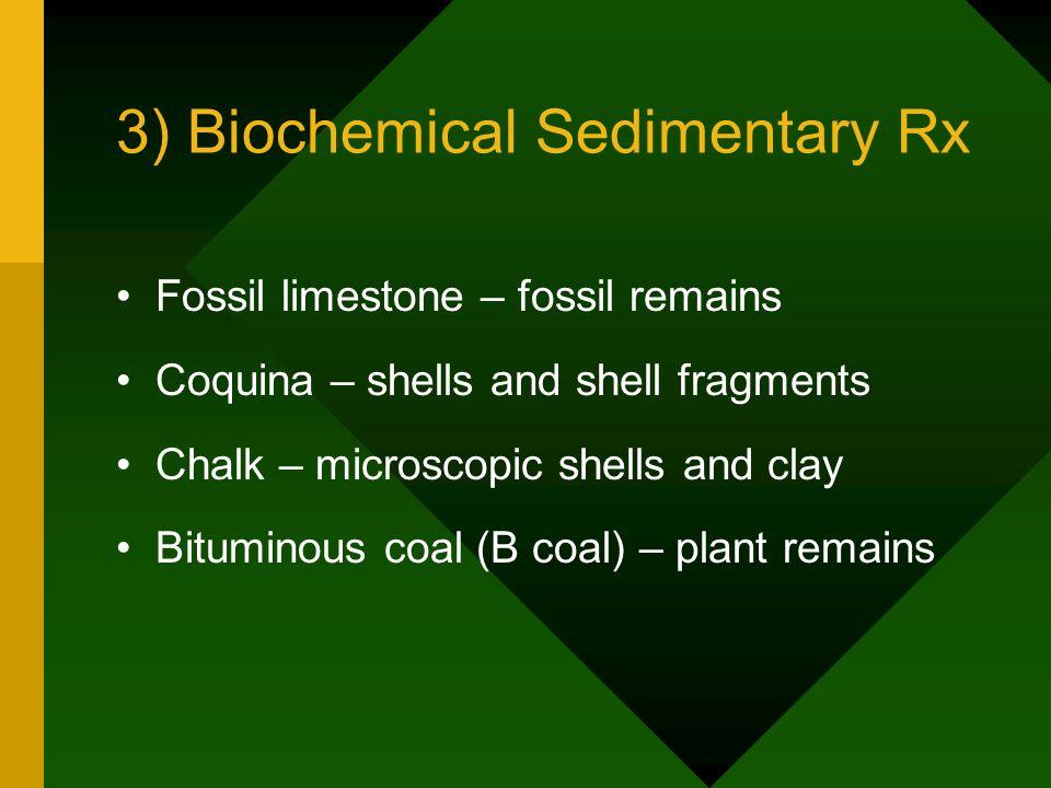 3) Biochemical Sedimentary Rx