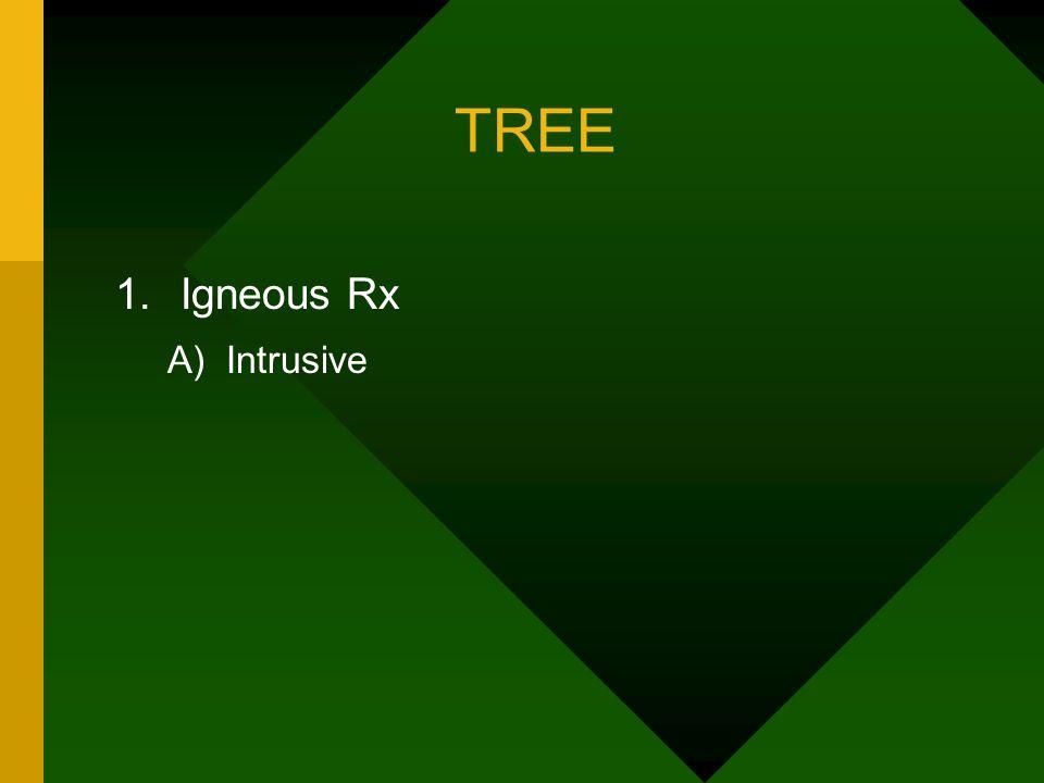 TREE Igneous Rx A) Intrusive