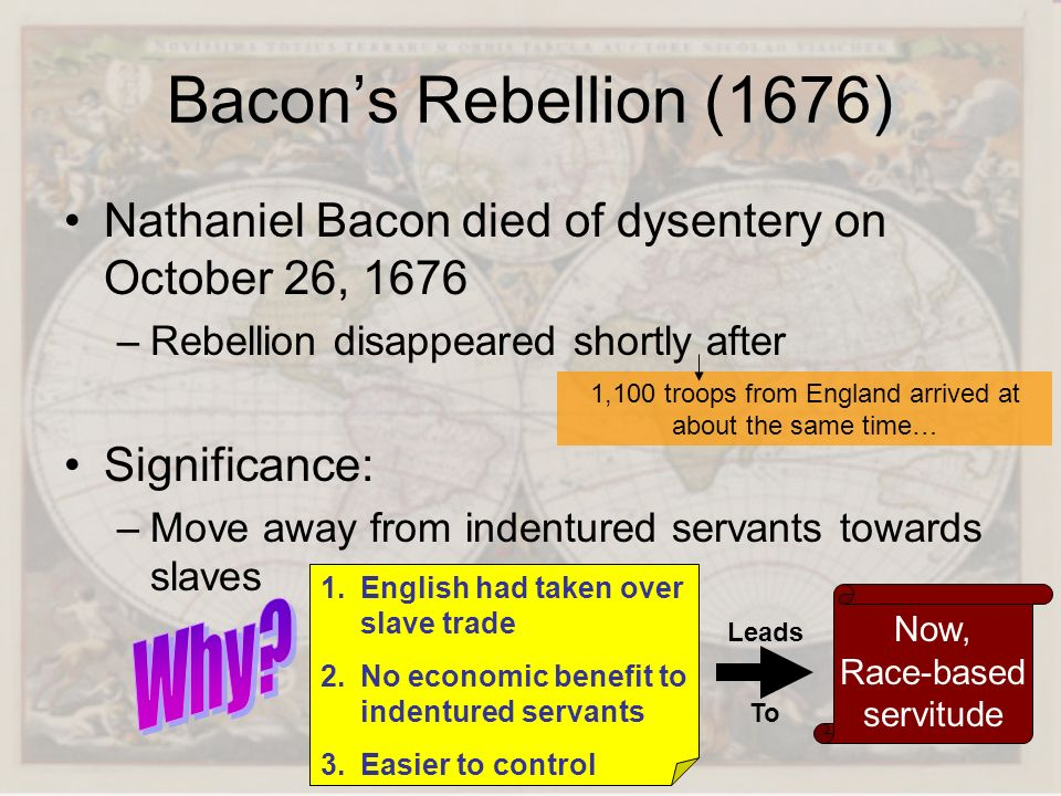 Bacon's Rebellion (1676) Why
