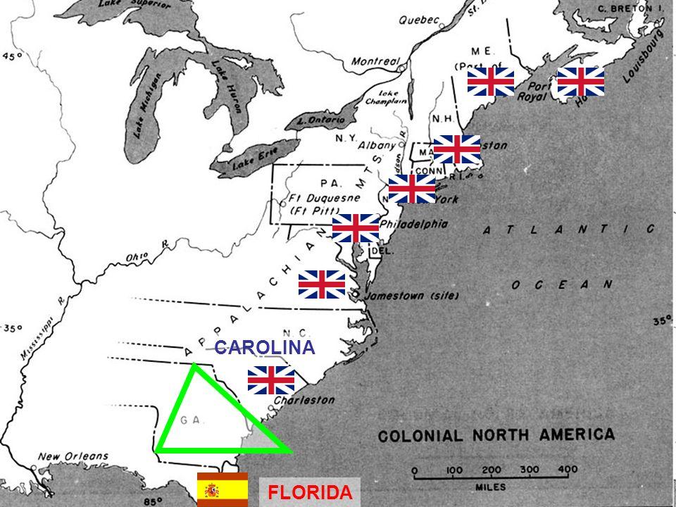 CAROLINA FLORIDA