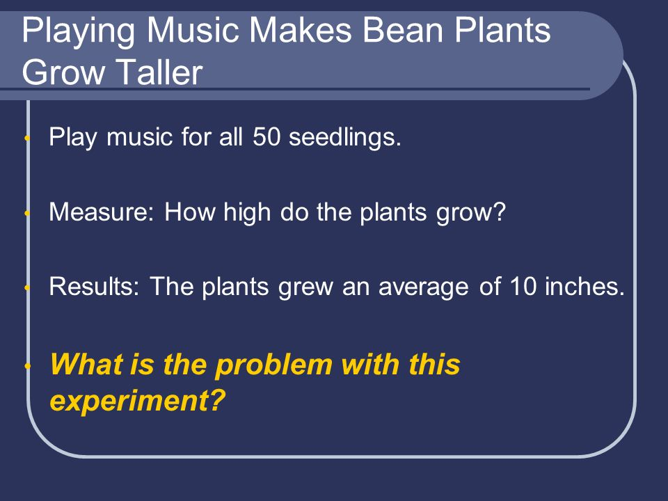Playing Music Makes Bean Plants Grow Taller