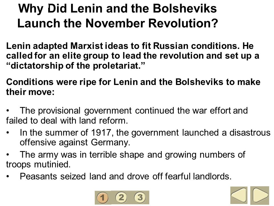 Why Did Lenin and the Bolsheviks Launch the November Revolution
