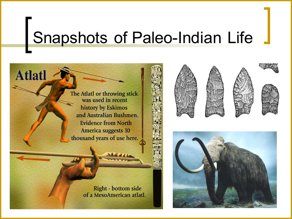Snapshots of Paleo-Indian Life