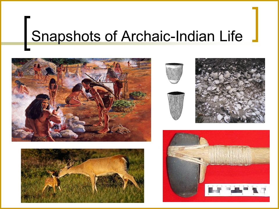 Snapshots of Archaic-Indian Life