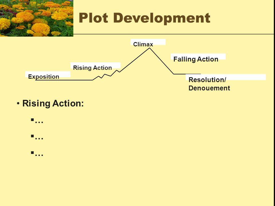Plot Development Rising Action: … Falling Action Resolution/