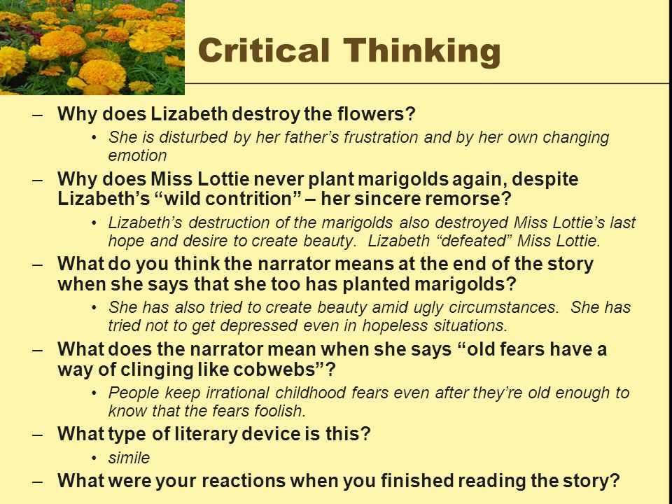 Critical Thinking Why does Lizabeth destroy the flowers