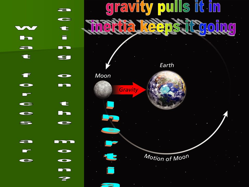 gravity pulls it in inertia keeps it going What forces are acting on the moon Inertia