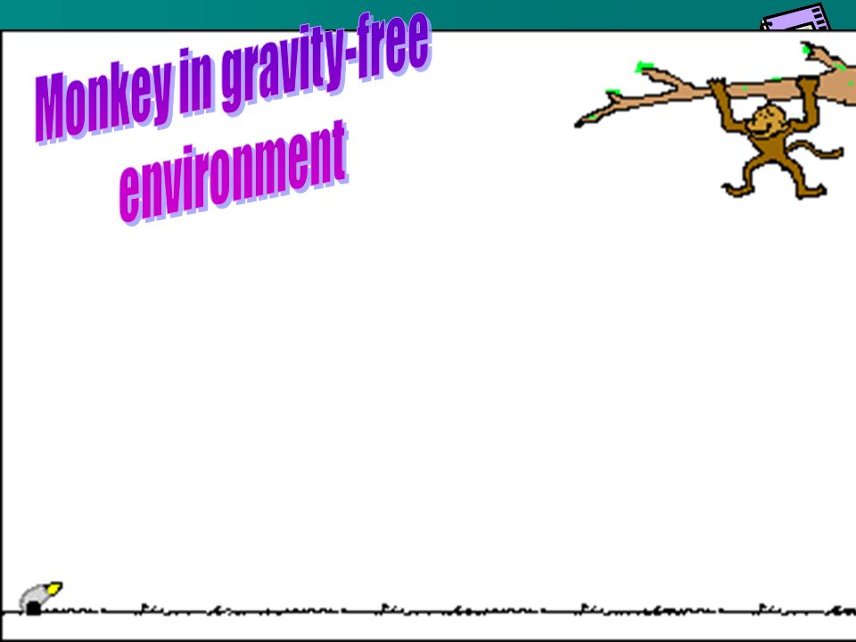 Monkey in gravity-free