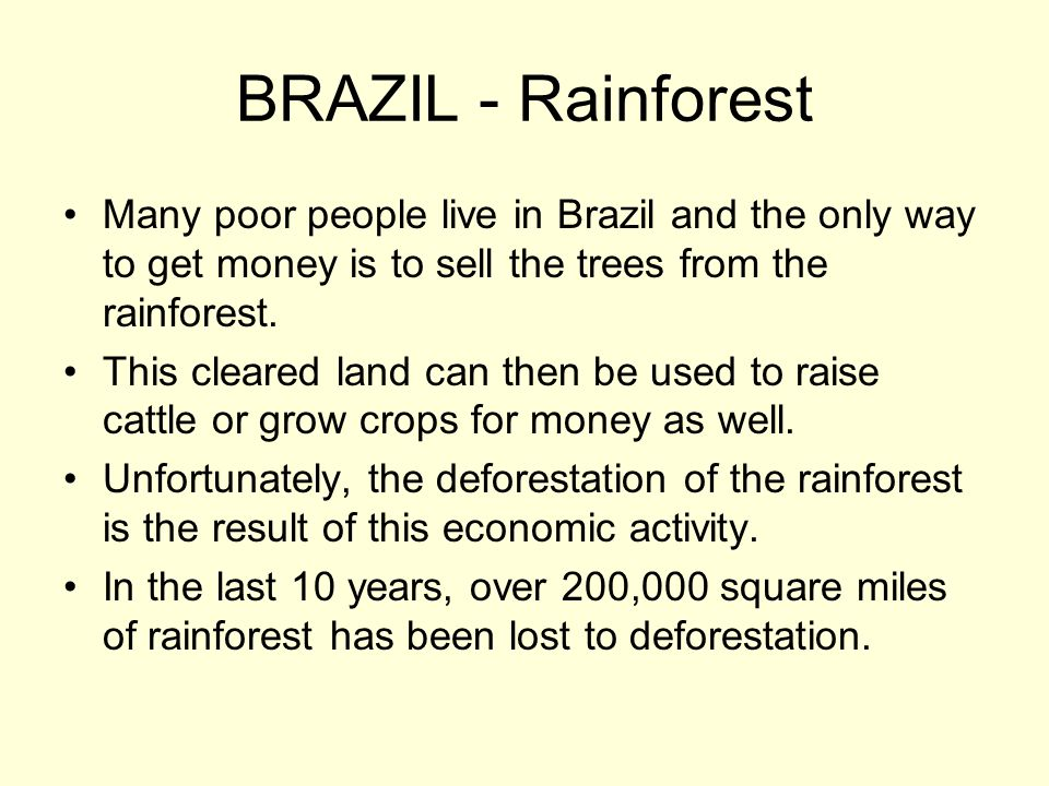 BRAZIL - Rainforest Many poor people live in Brazil and the only way to get money is to sell the trees from the rainforest.