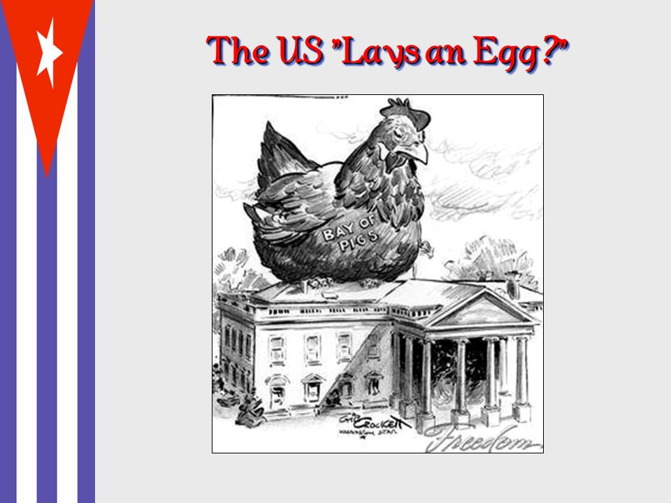 The US Lays an Egg