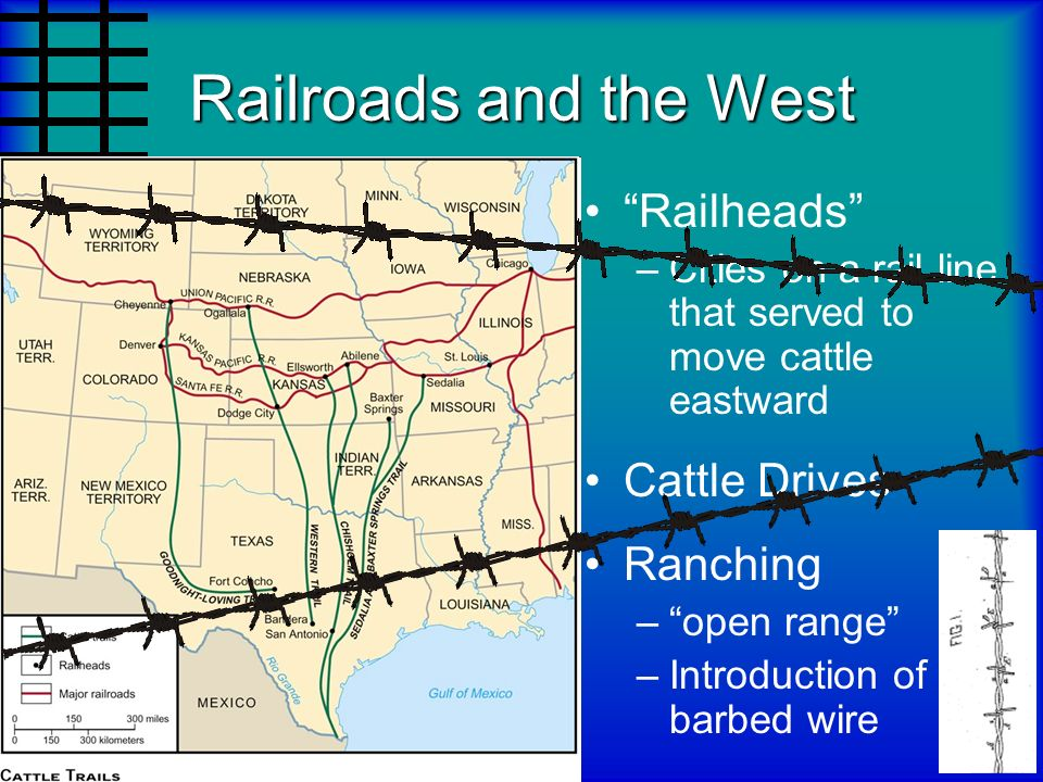 Railroads and the West Railheads Cattle Drives Ranching