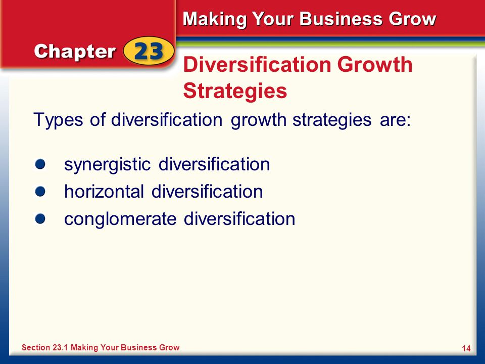 Diversification Growth Strategies