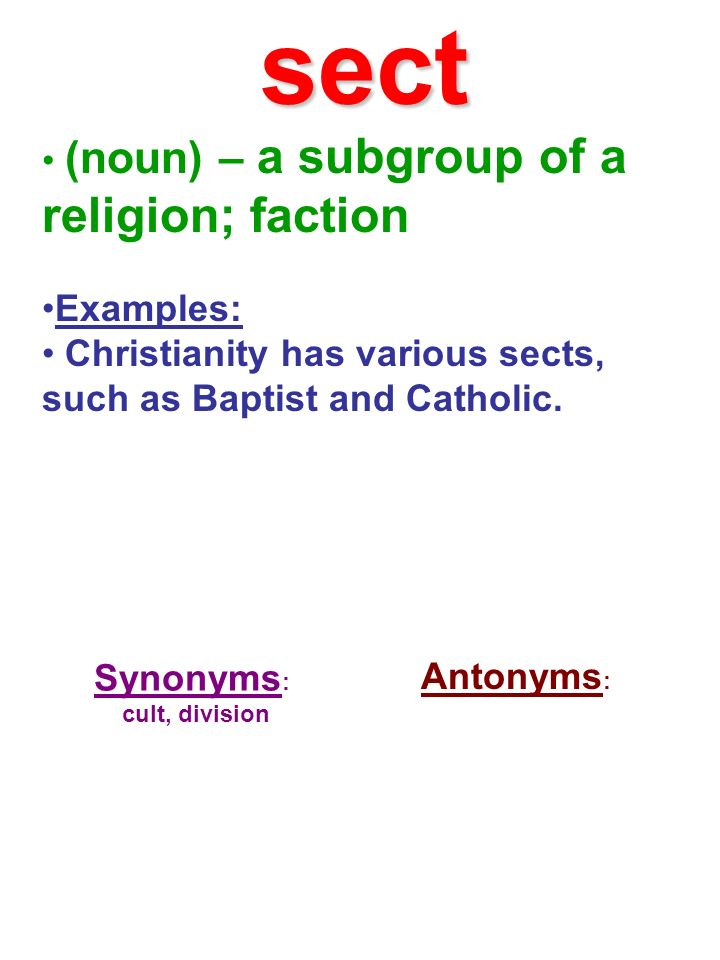 sect (noun) – a subgroup of a religion; faction Examples: