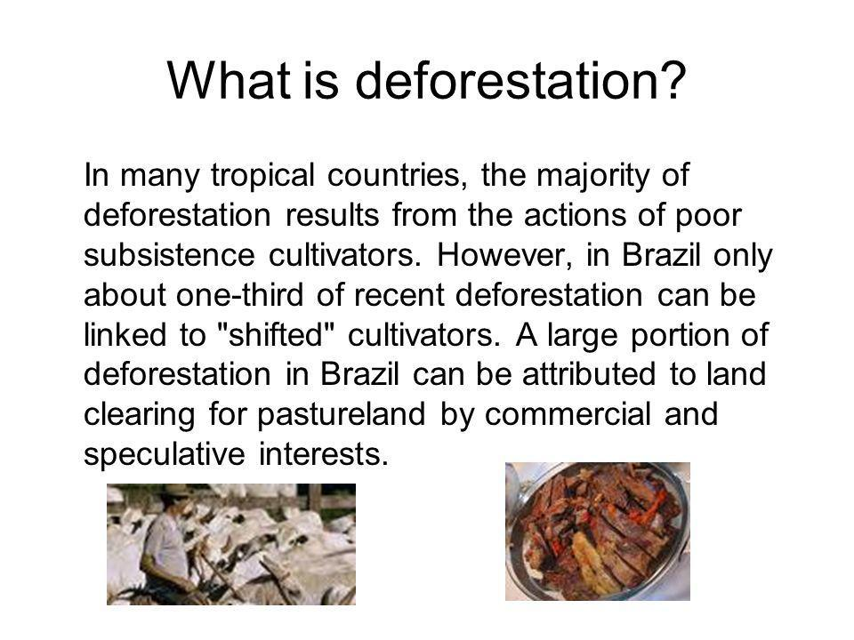 What is deforestation