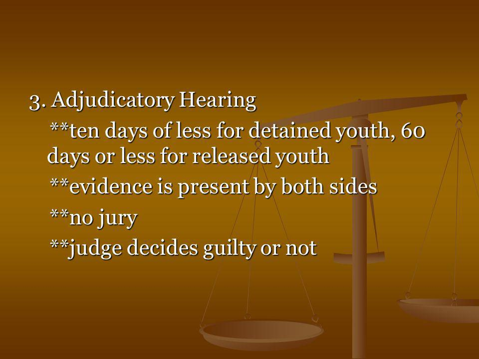 3. Adjudicatory Hearing **ten days of less for detained youth, 60 days or less for released youth. **evidence is present by both sides.