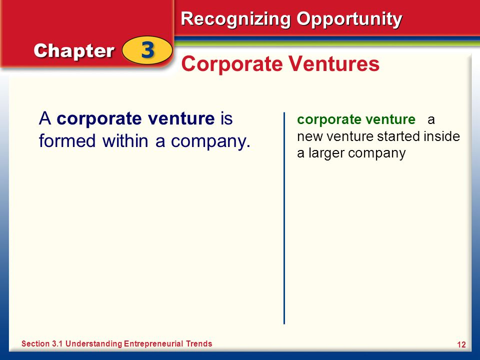 Corporate Ventures A corporate venture is formed within a company.