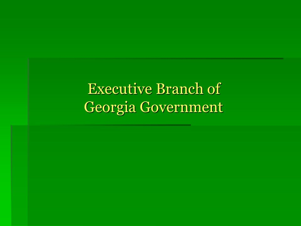 Executive Branch of Georgia Government