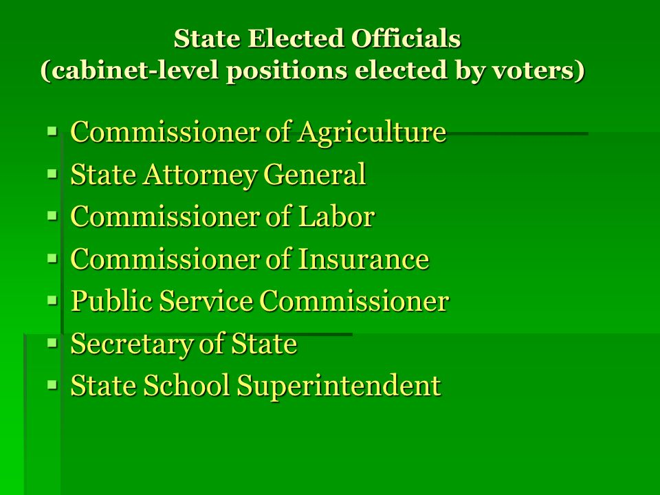 State Elected Officials (cabinet-level positions elected by voters)