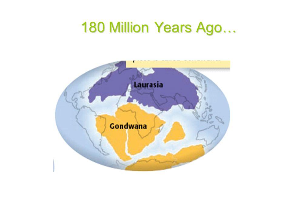180 Million Years Ago…