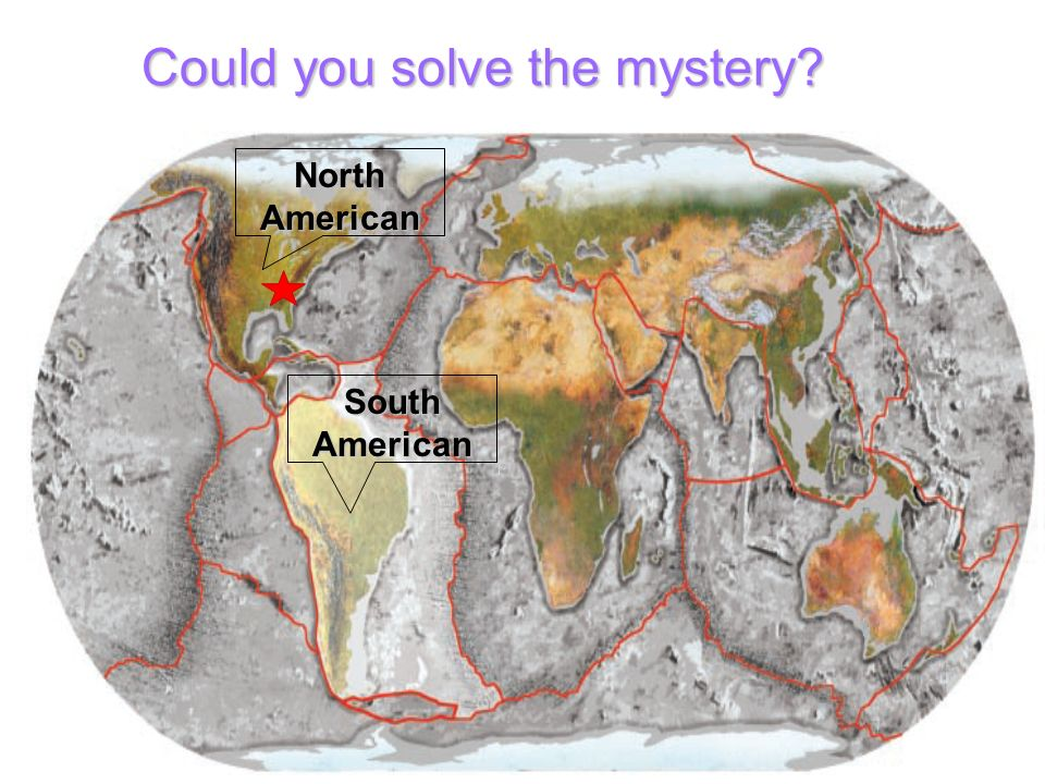 Could you solve the mystery