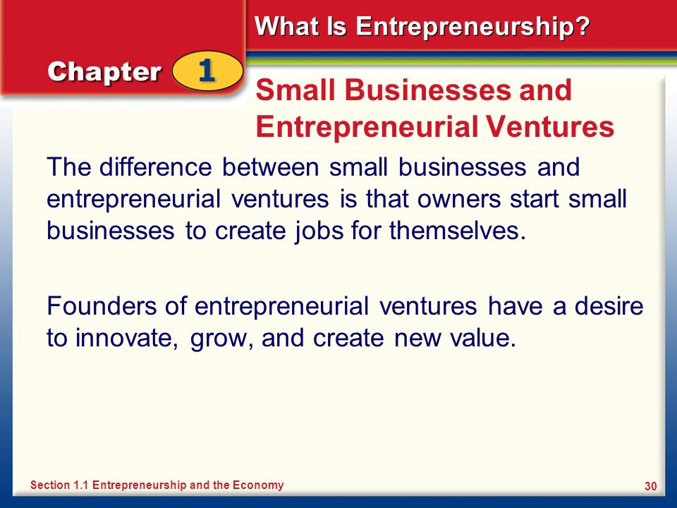 Small Businesses and Entrepreneurial Ventures