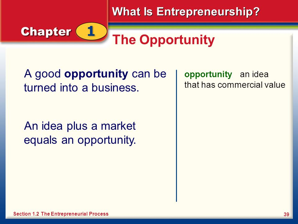The Opportunity A good opportunity can be turned into a business.