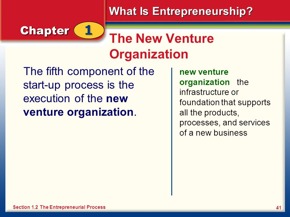 The New Venture Organization