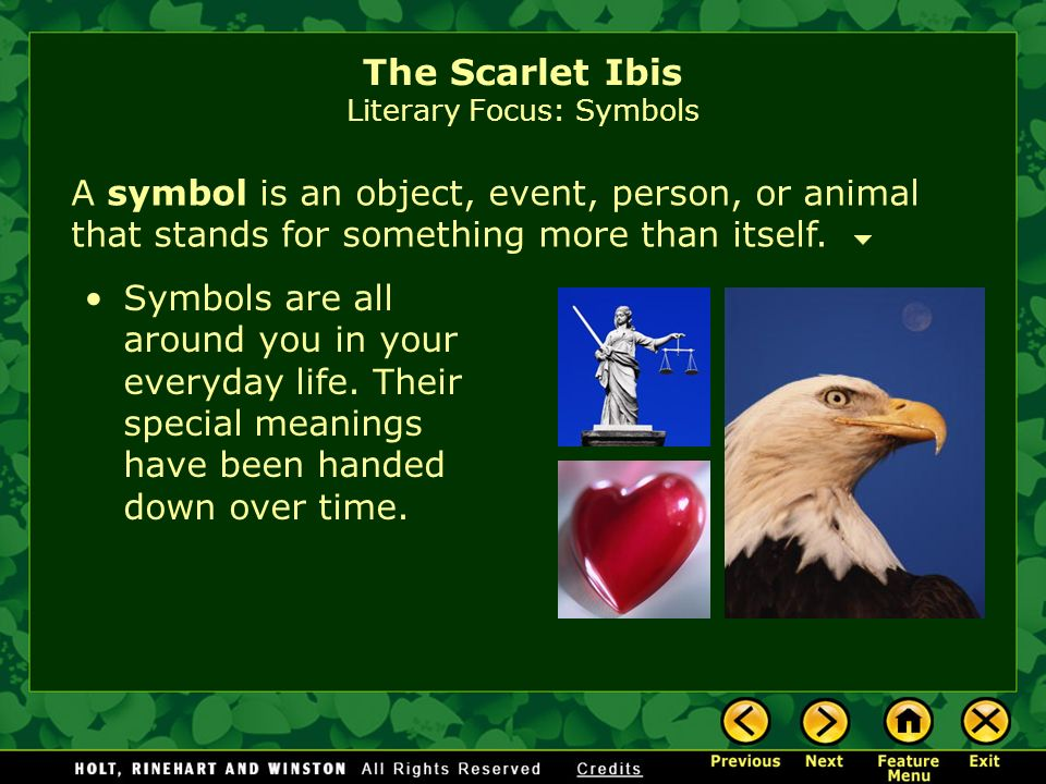 The Scarlet Ibis Literary Focus: Symbols