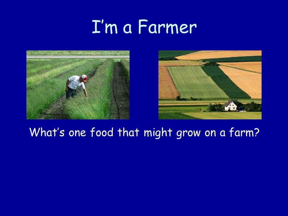 What's one food that might grow on a farm