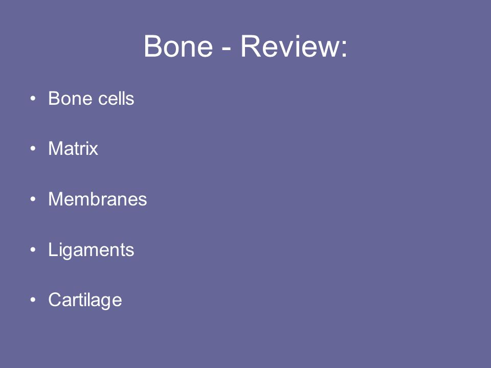 Bone - Review: Bone cells Matrix Membranes Ligaments Cartilage