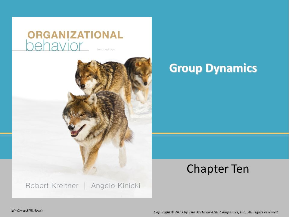 group and organizational dynamics