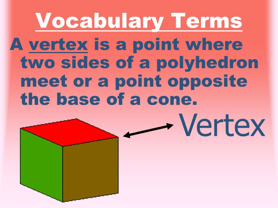Vertex Vocabulary Terms