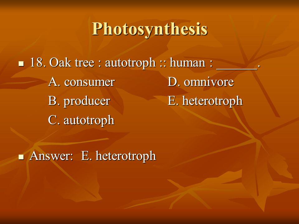 Photosynthesis 18. Oak tree : autotroph :: human : ______.