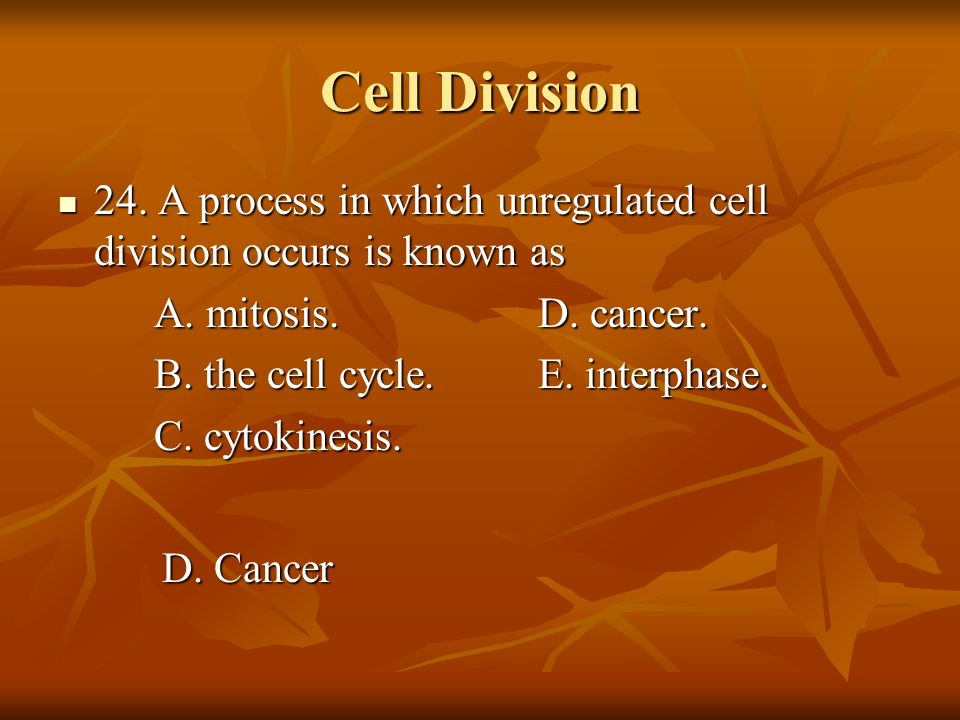 Cell Division 24. A process in which unregulated cell division occurs is known as. A. mitosis. D. cancer.