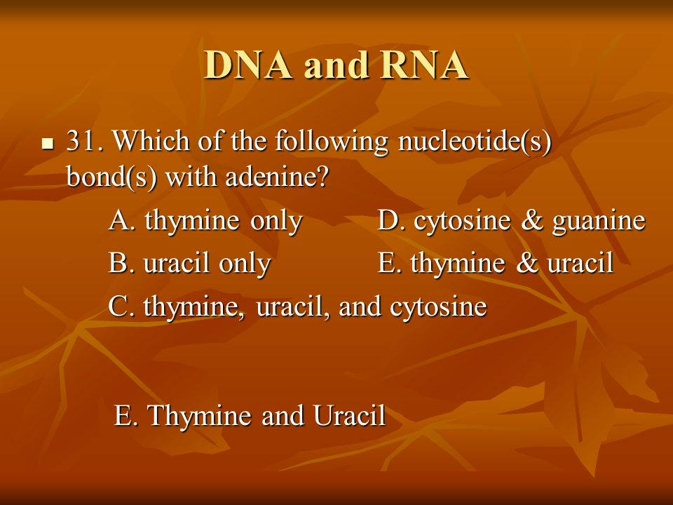 DNA and RNA 31. Which of the following nucleotide(s) bond(s) with adenine A. thymine only D. cytosine & guanine.