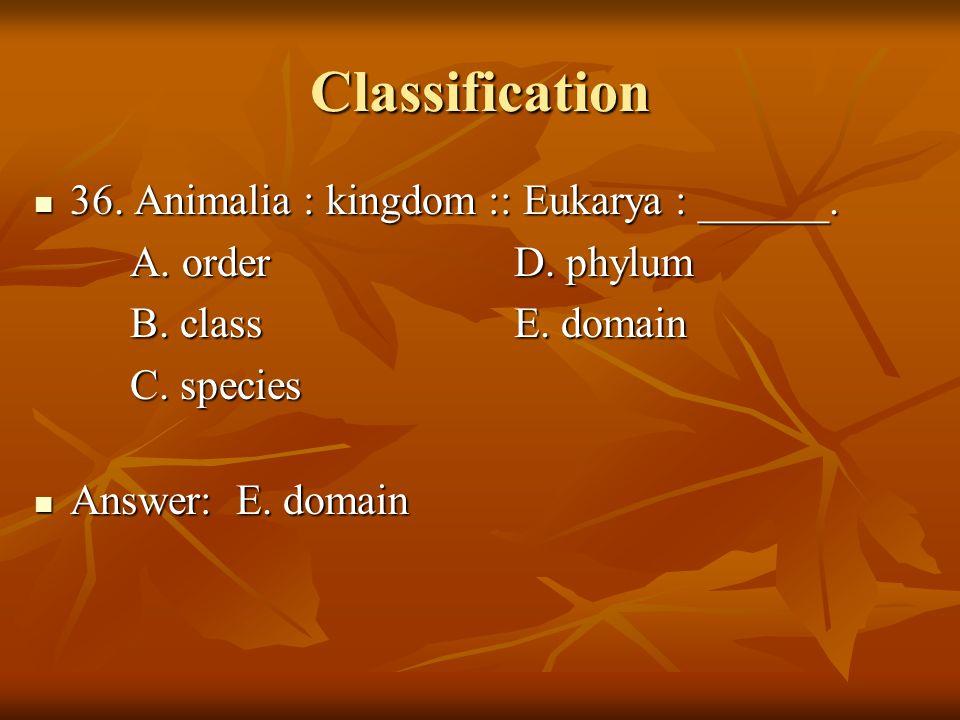 Classification 36. Animalia : kingdom :: Eukarya : ______.