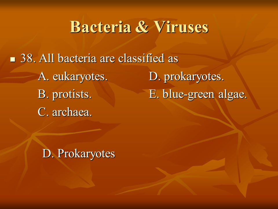 Bacteria & Viruses 38. All bacteria are classified as